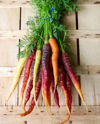 Bunch of multi colored carrots, orange, purple, yellow green.