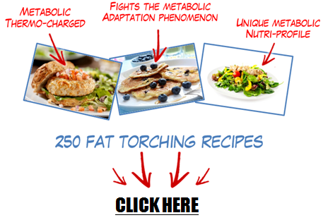 Metabolic recipes